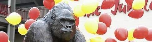 gorillabanner